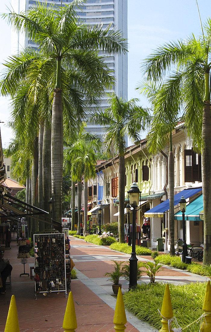 Viajes a Asia con Viajes Ikertanoa, todo el asesoramiento y la información necesaria para viajar independiente y diferente. Fotografía de Singapur.