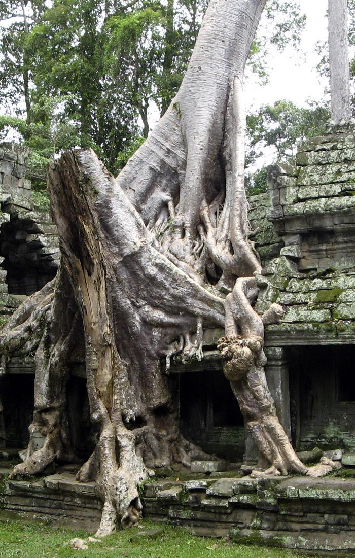 Viajes a Asia, Viajes a Camboya con Viajes Ikertanoa. Toda la información y asesoramiento para viajar.