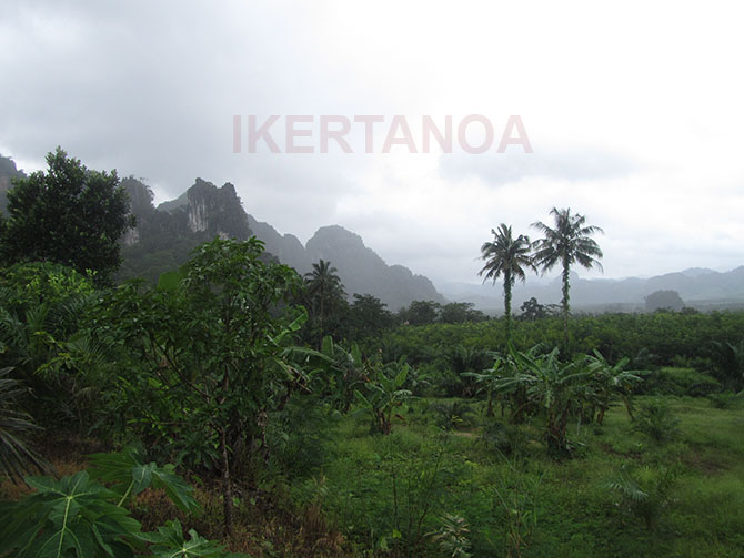 Khao Shok National Park, Viajes a Tailandia con Viajes Ikertanoa