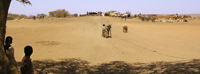 Viajes a Sudán con Viajes Ikertanoa. Historia moderna de Sudán. Toda la información para viajar a Sudán.
