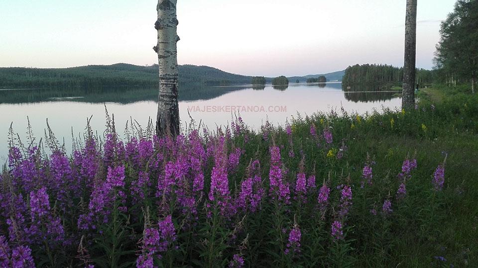 Lago enfrente del camping de Jokkmokk en Suecia.