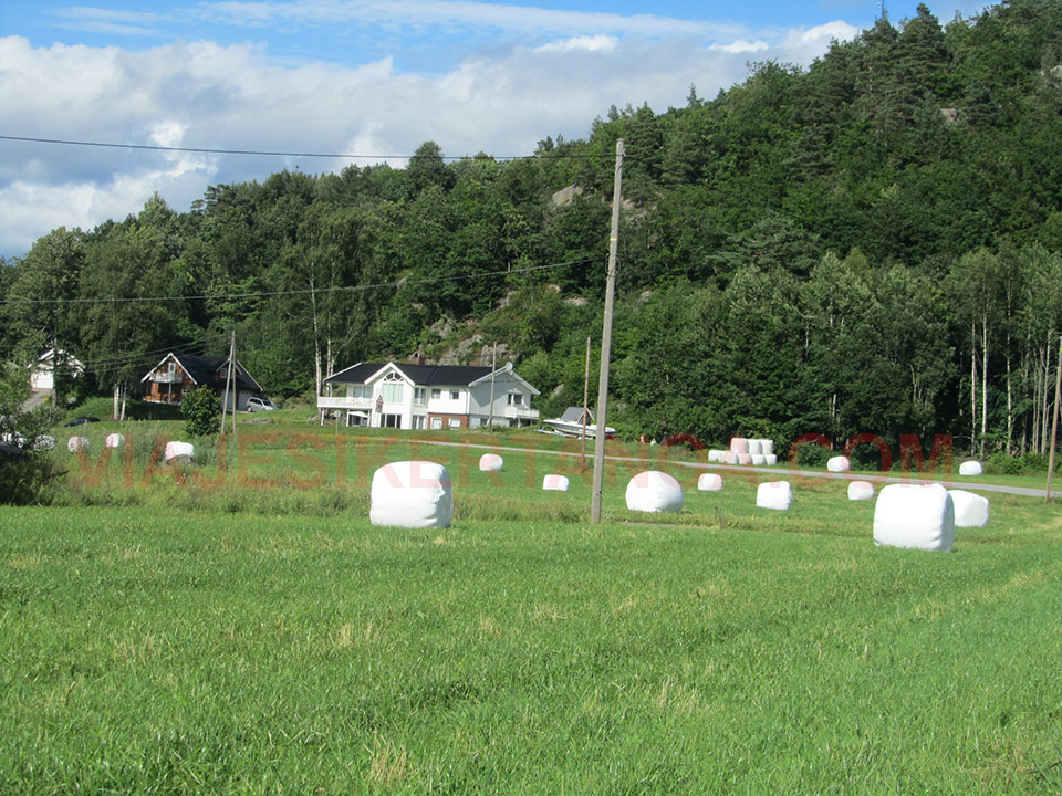 Casas típicas noruegas.