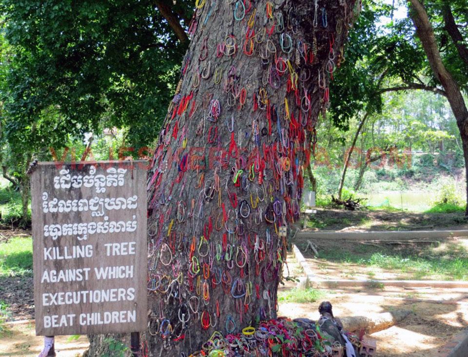 Árbol contra el que golpeaban a los niños en el campo de la muerte de Choeung Ek en phnom Penh, Camboya.