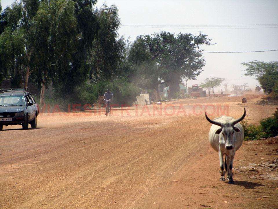 Carretera que atraviesa el pueblo de Palmarín en Senegal