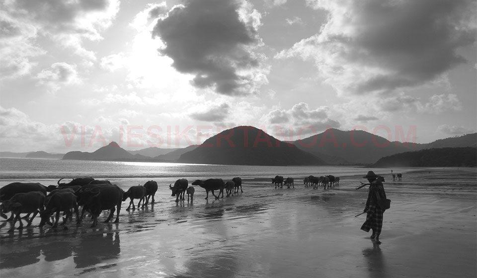 Puesta de sol en Selong Blanak Beach en Lombok, Indonesia