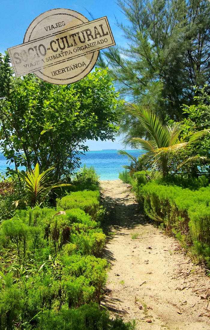 Viaje a Sumatra organizado acompañado por Asesor de Viajes Ikertanoa. Tipo de viaje: Socio-cultural.