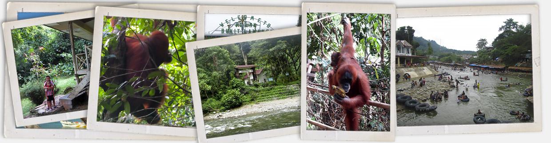 visita-a-bukit-lawang-en-sumatra-con-viajes-ikertanoa-img