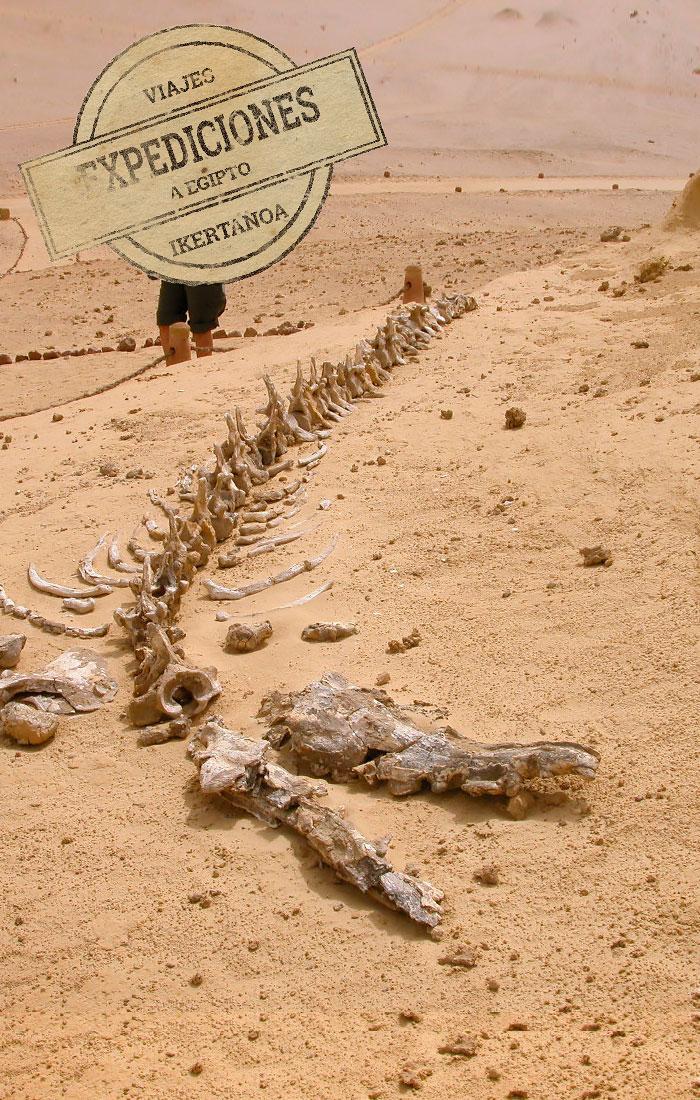expediciones-a-egipto-los-origenes-de-egipto-img