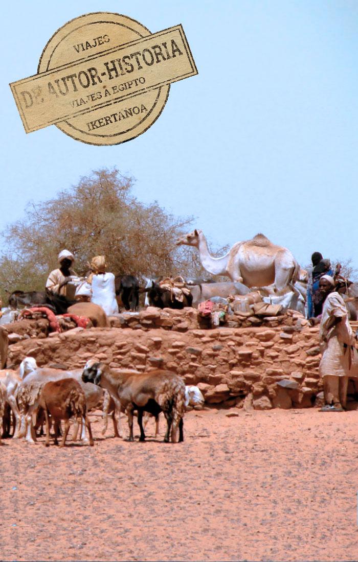 viajes-a-egipto-de-autor-recreaciones-darb-el-arbain-ruta-40-dias-caravanas-sudan-img
